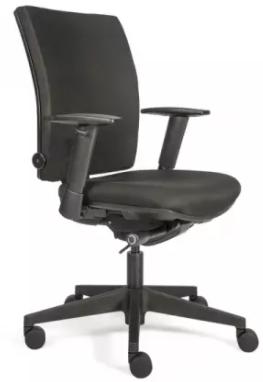 Bürodrehstuhl mit Armlehnen - gepolstert - Lordosenstütze - Kunststofffußkreuz