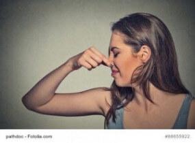 Duft-Disharmonie verhindern – Parfum und Pflegeprodukte richtig aufeinander abstimmen