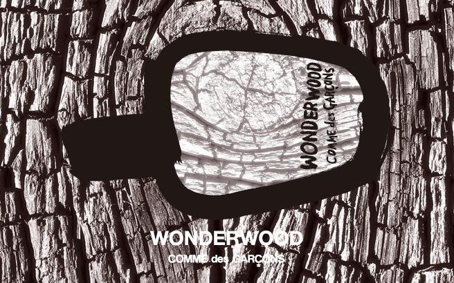 comme-des-garcons-wonderwood-header