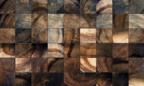 Welche-Holzarten-lassen-sich-ideal-kombinieren