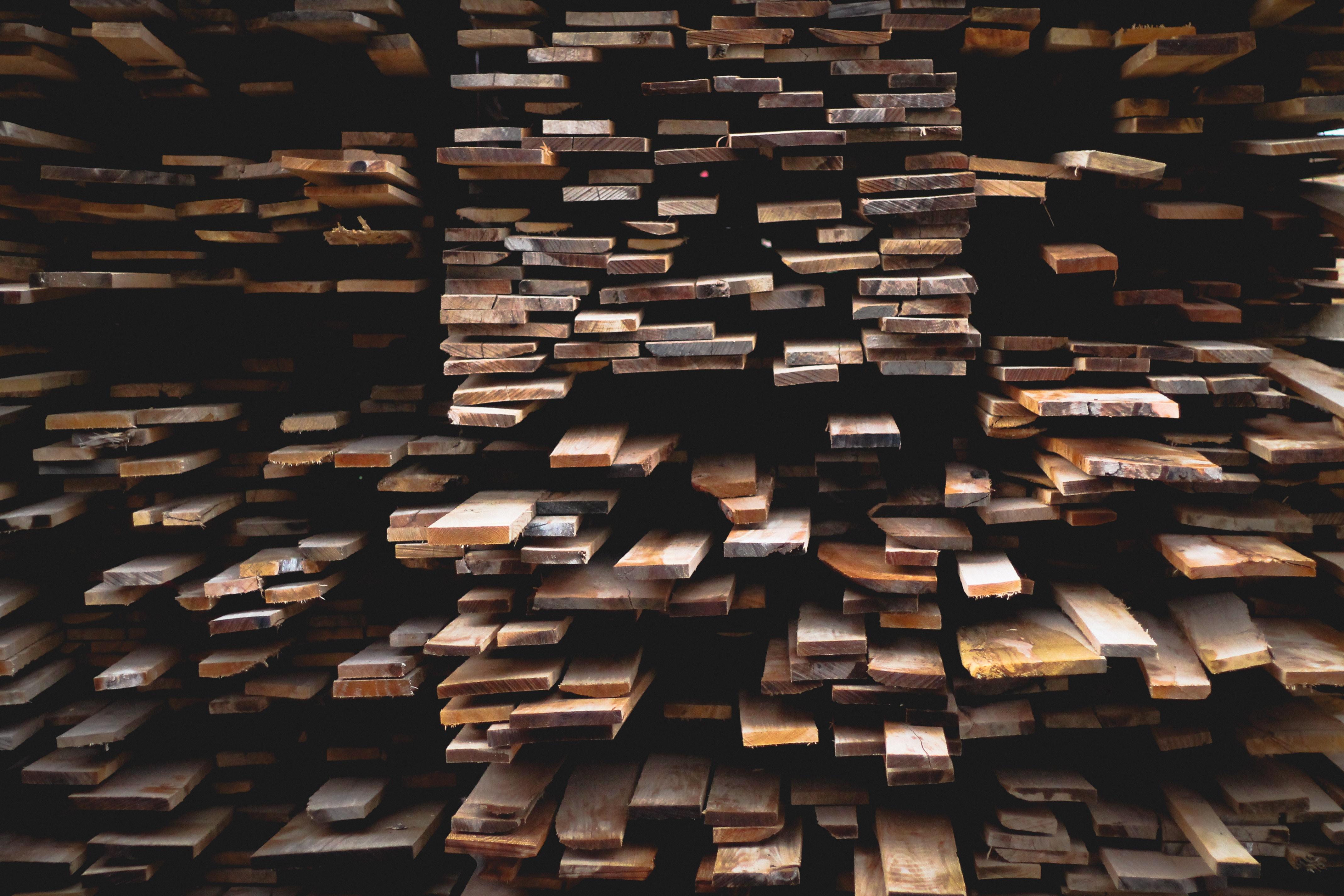 Warum Holz als Baustoff? – Die Vorteile von Holz | wodewa