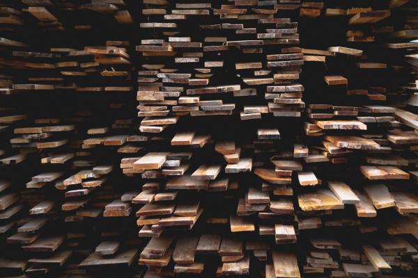 Warum-sollten-Sie-Holz-als-Baustoff-verwenden-Die-Vorteile-von-Holz